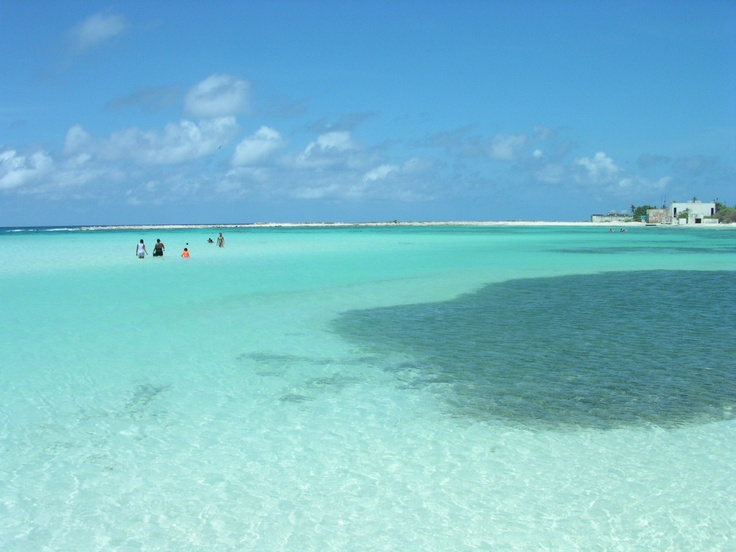 Boca Catalina Beach Aruba... that water is so inviting... want to grab a float and soak up comes ray!