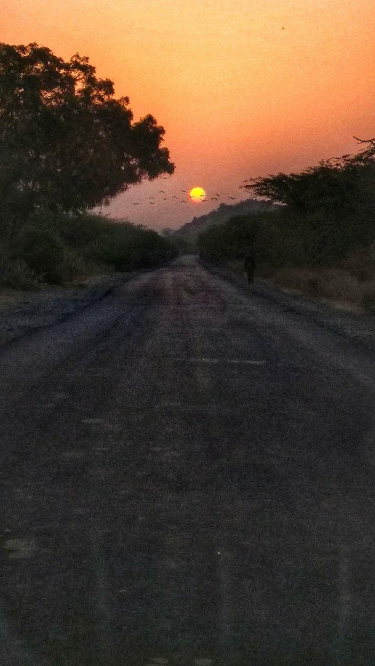 Jalor to Sirohi Road... Morning time click by Qayyum Khan