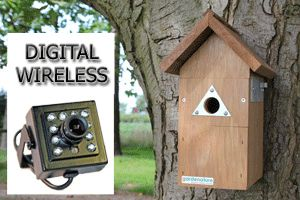 Wireless Nest Box Camera System