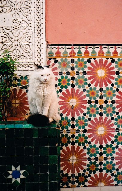 Gorgeous coloring and patterning in this Moroccan tile. Marrakech, Morocco
