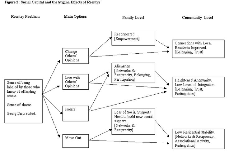 Diagram of Stigma Effects of Reentry  ||  FROM PRISON TO HOME: THE EFFECT OF INCARCERATION AND REENTRY ON CHILDREN, FAMILIES, AND COMMUNITIES  INCARCERATION, REENTRY, AND SOCIAL CAPITAL: SOCIAL NETWORKS IN THE BALANCE  By: Dina R. Rose John Jay College of Criminal Justice  Todd R. Clear John Jay College of Criminal Justice  December 2001