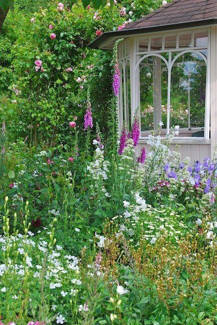 English garden..