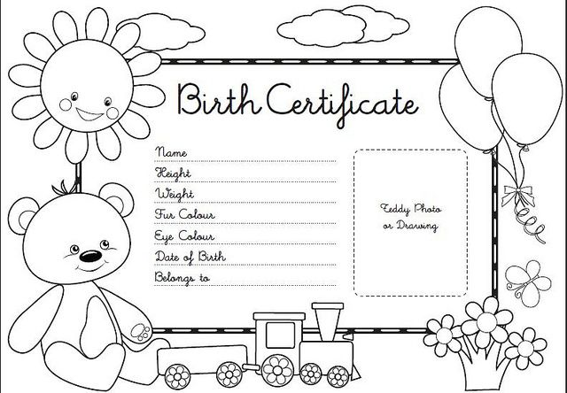 Teddy bear picnic teddy bear birth certificate teddy for Build a bear birth certificate template