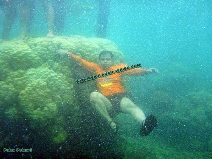 Pulau Seribu Wisata Jakarta Kepulauan Seribu.