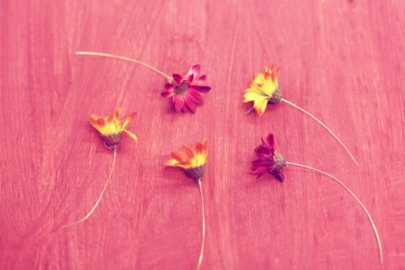 Flowers with wires