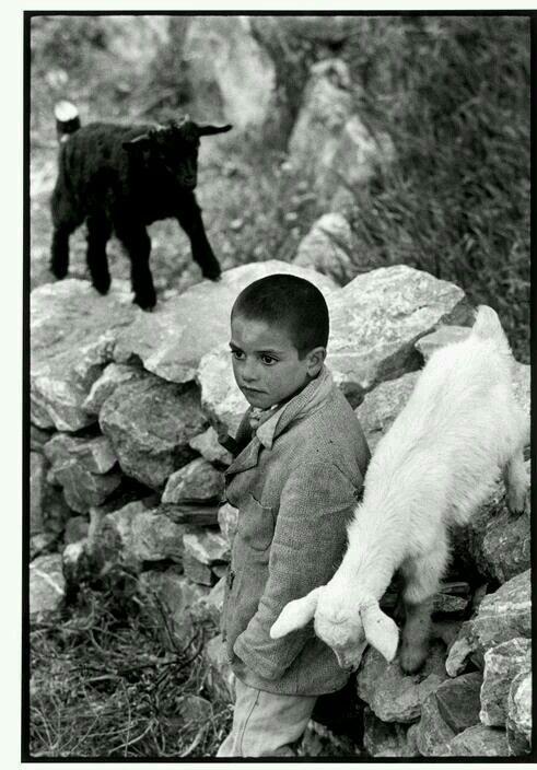 1964 ΚΡΗΤΗ.