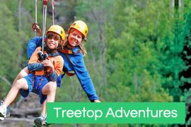 Hollybank Treetops Adventures