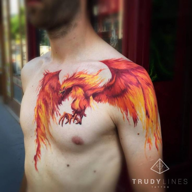 Illustrative style phoenix tattoo on chest and shoulder. Tattoo artist: Corina Weikl · Trudylines