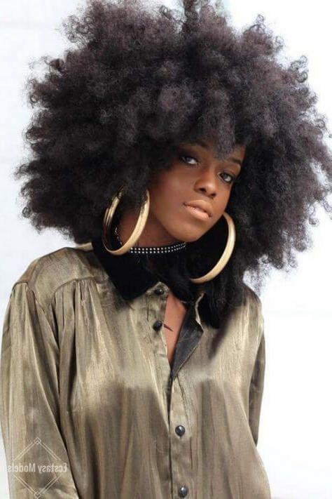 Les coiffures afro. Styles et soins étape par étape