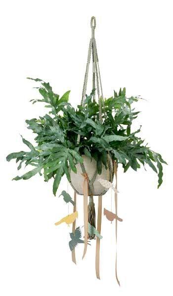 Ben je ook helemaal weg van de bungelende pothangers en wil je zelf ook een planthanger in je kamer? Hier vind je alles wat je nodig hebt om zelf een planthanger te maken!