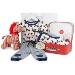 Baby Hampers | FREE Delivery | Red Wrappings