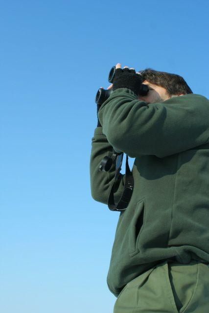 Censimenti invernali sul Po (foto di L.Zamprogno). L'Associazione è direttamente impegnata nel monitoraggio della fauna selvatica nel tratto pavese del Po (www.uomoeterritoriopronatura.it).