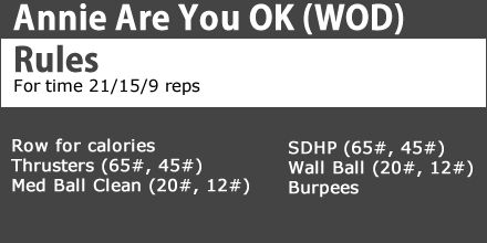 Annie are you OK #wod http://www.dsstuff.com/crossfit-workouts-of-the-day/  #crossfit