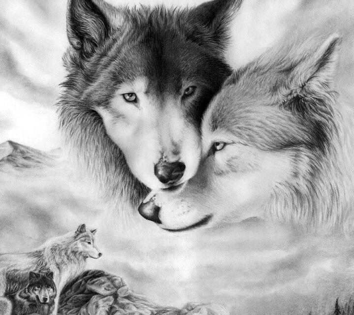 Best 25 two wolves tattoo ideas on pinterest fight definition beautiful wolves ccuart Images