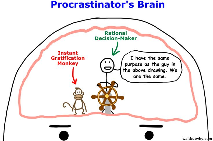 Oh.My.Goodness.  This is such a helpful article.  Why Procrastinators Procrastinate.