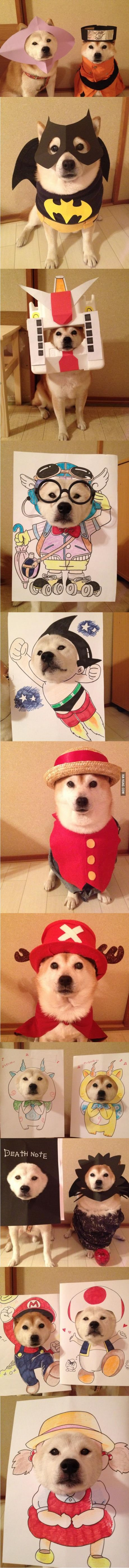 11 Adorable Shiba Cosplays That Are Much Cute, Very Wow - Those are some patient Shibas.