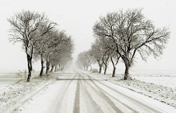 I love snowy scenes... it's like the world has frozen and you are the only one moving through time