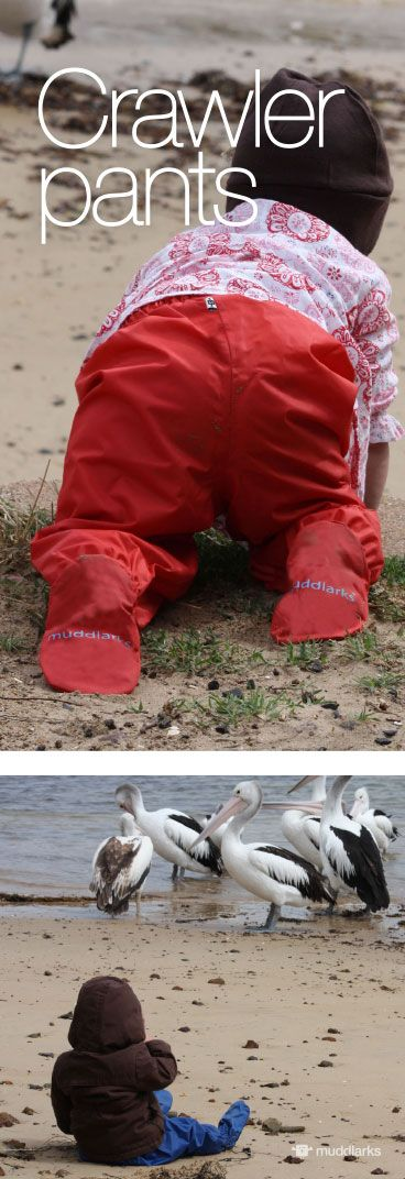 Girl crawling on sand in red muddlarks® crawler pants and girl sitting on sand near pelicans in blue muddlarks® crawler pants