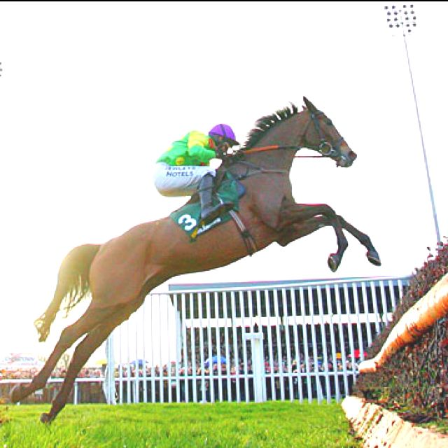 The awesome Kauto Star (19.3.2000) ridden by Ruby Walsh and trained by Paul Nicholls. He won the Cheltenham Gold Cup twice (2007 & 2009), becoming the 1st horse to ever win, lose & then regain, NH racing major steeplechase race. He won the King George VI Chase a record five times (2006-2009 & 2011), & the Betfair Chase (2006-2007, 2009, 2011). Widely considered one of the greatest steeplechasers of all time.
