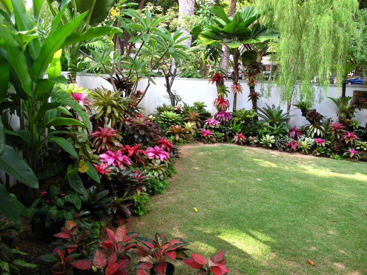 Pearl's bromeliad garden, Singapore.
