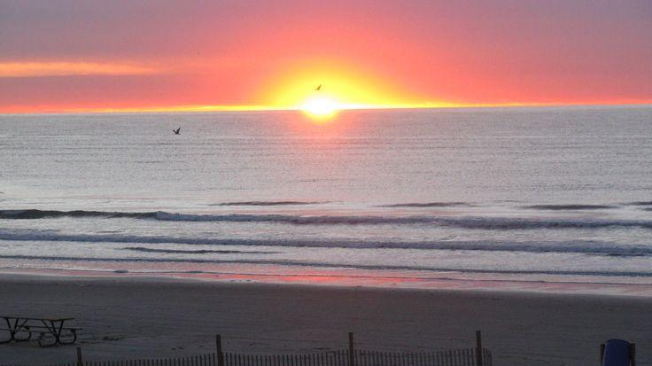Rising Sun: Lisa K Gonzales * Surfside Beach, Texas
