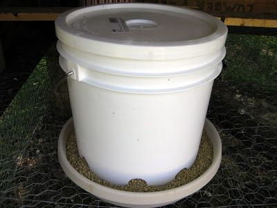 Homemade Chicken Feeder and Waterer | Loomis Living
