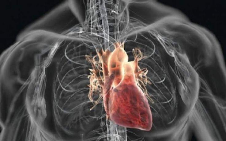 Αποκαταστήστε την καλή λειτουργία της καρδιάς σας και διατηρήστε την υγιή με μια ποικιλία τροφών που έχουν την ικανότητα να αποφράσσουν και να καθαρίζουν τις αρτηρίες από τη συσσώρευση πλάκας, να μειώνουν την αρτηριακή σας πίεση, και να μειώνουν τις φλεγμονές των αγγείων, τους κύριους ενόχους της καρδιαγγειακής νόσου. Πολλές από τις τροφές που π… …