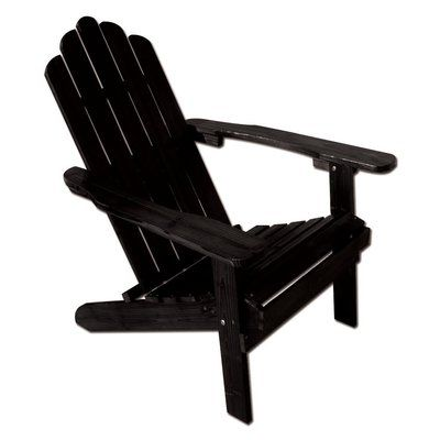 AspenBrands Poly Recycled Plastic Folding Adirondack Chair Finish: Black