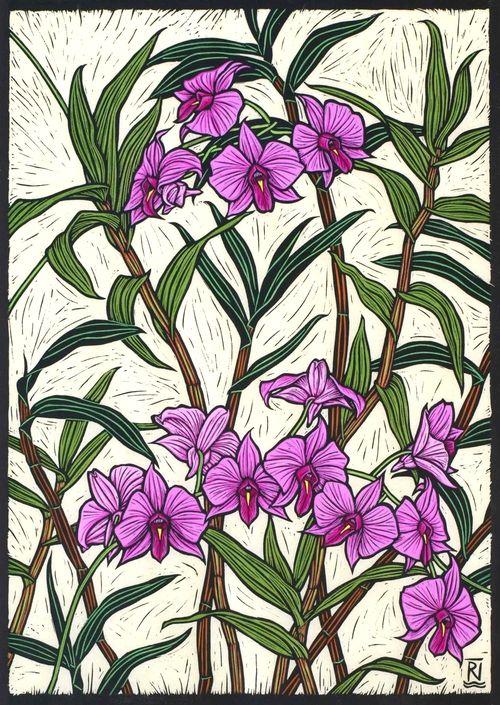 Rachel Newling ARTIST & PRINTMAKER, COOKTOWN ORCHID 47.5 X 33.5 CM  EDITION OF 50 HAND COLOURED LINOCUT ON HANDMADE JAPANESE PAPER