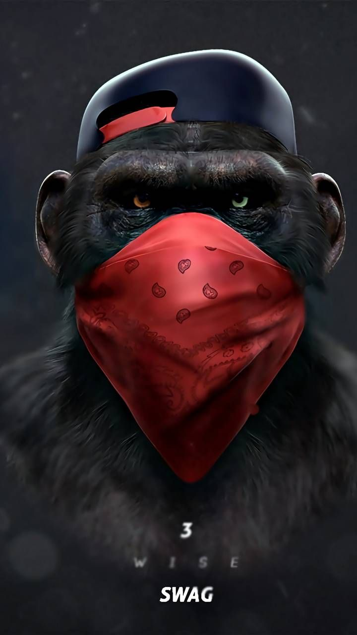Monkey Swag Talk Wallpaper In 2019 Monkey Wallpaper Mobile
