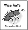 Proverbs 6:6 - various ideas about ants