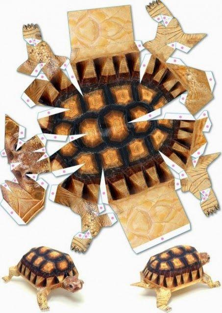 Eu Amo Artesanato: Tartarugas