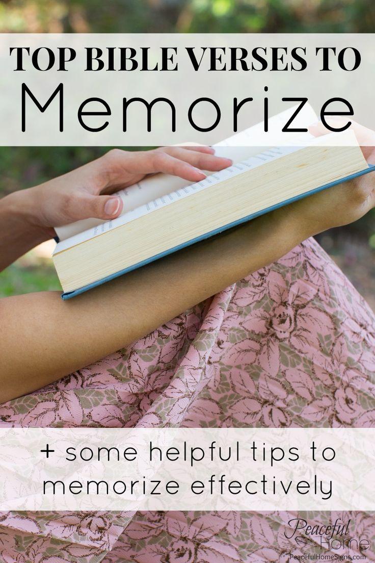 The Memorization Study Bible: The New Testament: Tom Meyer ...
