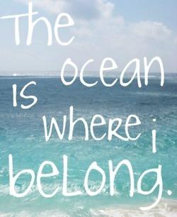 belong.