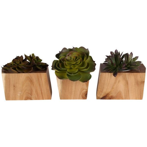Kate and Laurel Jakara Geometric Wood Block 3-Piece Desk Planter Set -... ❤ liked on Polyvore featuring home, home decor, geometric pot, timber planters, wooden home accessories, inc international concepts and wood pot