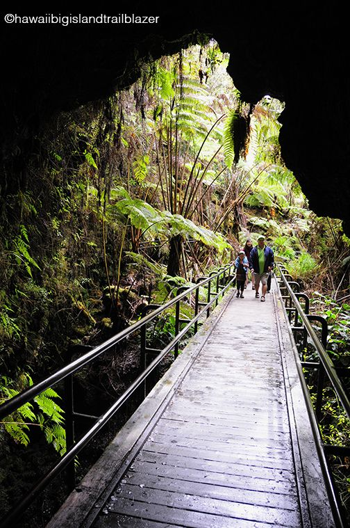 Thurston Lava Tube entrance, Volcanoes National Park, Hawaii Big Island. Directions to get here: Hawaii Big Island Trailblazer. www.trailblazertravelbooks.com