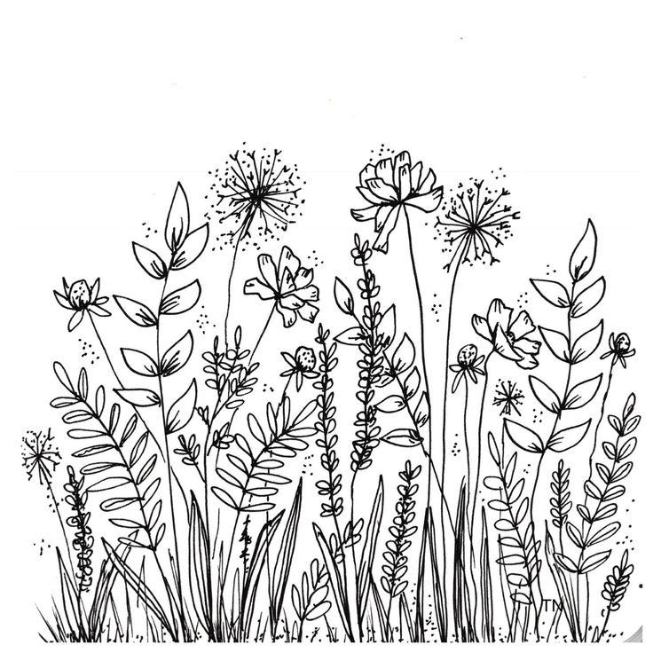 line flower drawing drawings easy doodles botanical