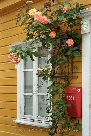 Knøsesmauet, Bergen, Norway
