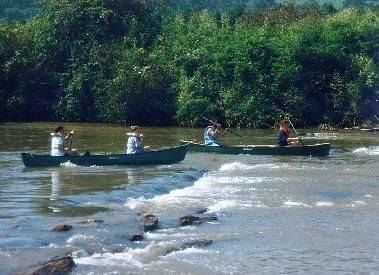 8 best images about boone water recreation on pinterest for Fishing in boone nc