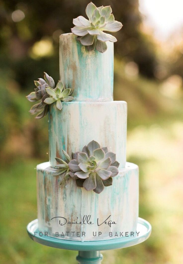 Water color cake with fresh succulents.