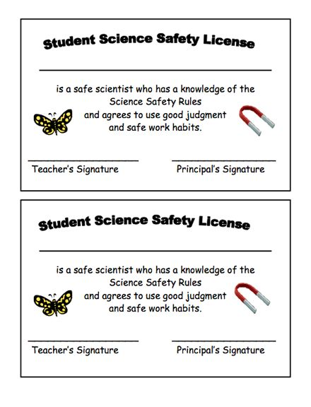 Science Safety Lesson Plans For Second Grade on Inter Safety Worksheets For Middle School