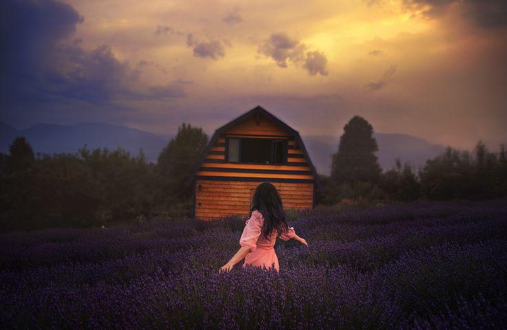 https://flic.kr/p/WnKUPo | Okanagan lavender  barn