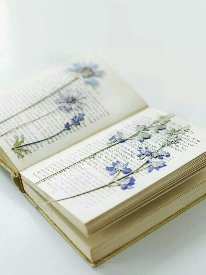Bloemen drogen in een boek.
