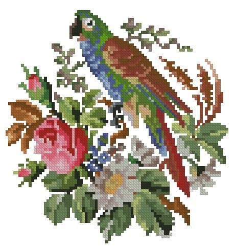 Parrot in flowers antique pattern for cross stitch or