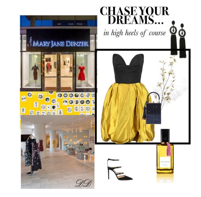 """Chase Your Dreams in High Heels!"" by divadebbi on Polyvore featuring Oscar de la Renta, Pier 1 Imports, Jill Haber, Diana Vreeland, Gianvito Rossi, oscardelarenta, DivaDebbi, GianvittiRossi, MaryJaneDenzer and Dianavreelandfragrances"