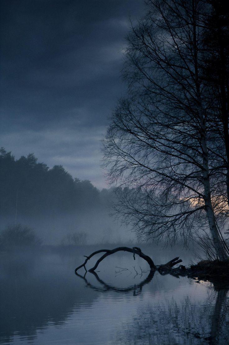 Misty Evening in Rovaniemi Finland [OC] (4000×2664…