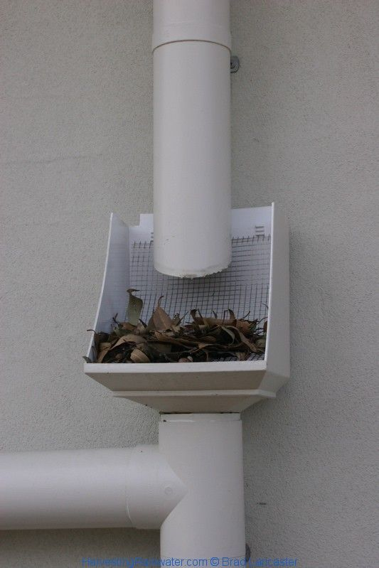 Rainhead screen.  Another layer of protection from leaves/debris.....  Look into more by checking out the picture link