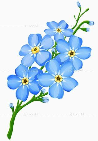 26 best forget me nots images on pinterest drawings forget me forget me not tattoo sketch ccuart Image collections