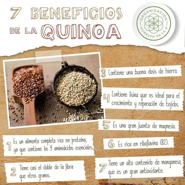 7 Beneficios de la QUINOA  #Nutrición y #Salud YG > nutricionysaludyg.com