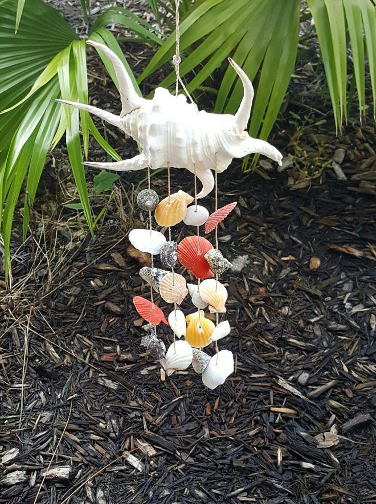 Natural Shell Wind Chime by BeachHomeDecor on Etsy